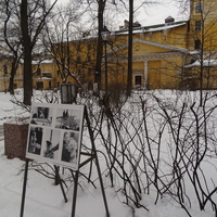 Сад Фонтанного дома