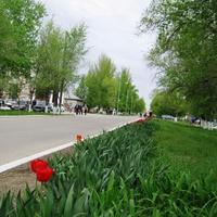 Мокроус. Улица Победы - пешеходная зона с 1983г.
