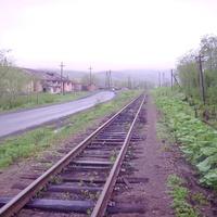 Быков
