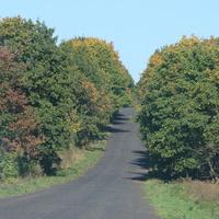 Шлях до сумської траси