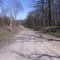 Спуск від лісництва до села.