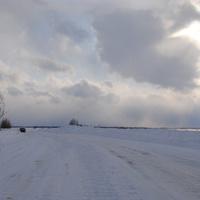 Зимник в урощище Чистый Яр.