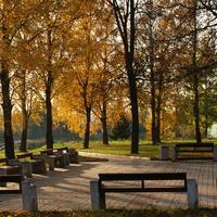 Покровское Истринский район. Осень