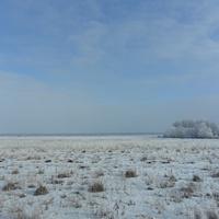 Зимнее поле, Сасовский район, 2018