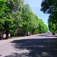 Вулиця Тараса Шевченко.