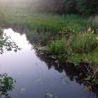 река Россошка