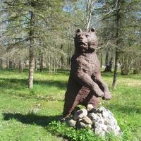 Медведица у пруда