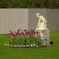 Собственный сад