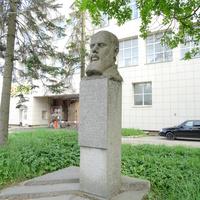 Памятник-бюст советскому государственному деятелю и учёному, уроженцу Красного Села, Николаю Петровичу Горбунову