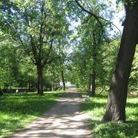 """В парке """"Екатерингоф"""""""
