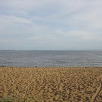 Пляж...Берег Финского залива.