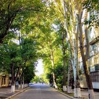 город Измаил, улица Кишиневская
