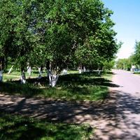 МОКРОУС. Улица СОВЕТСКАЯ - одна из первых улиц нового кантцентра АССР НП.  Основана в 1935г.
