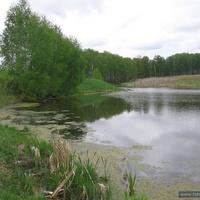 Пруд в Ламоново