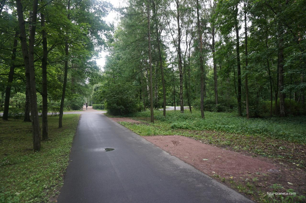 Парк Политежнического университета. | Академическое (муниципальный округ)