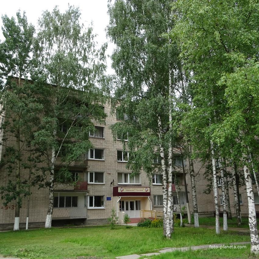 Первая академическая гимназия в Гатчине
