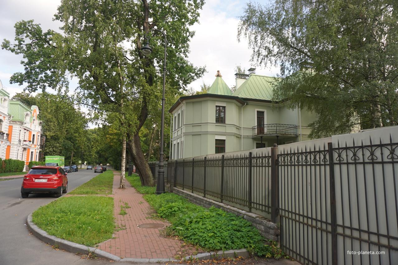 Каменный остров. Депутатская улица.