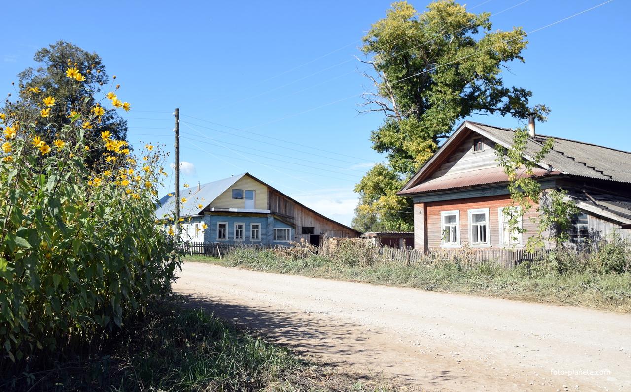 Улица в деревне Пирогово Советского района