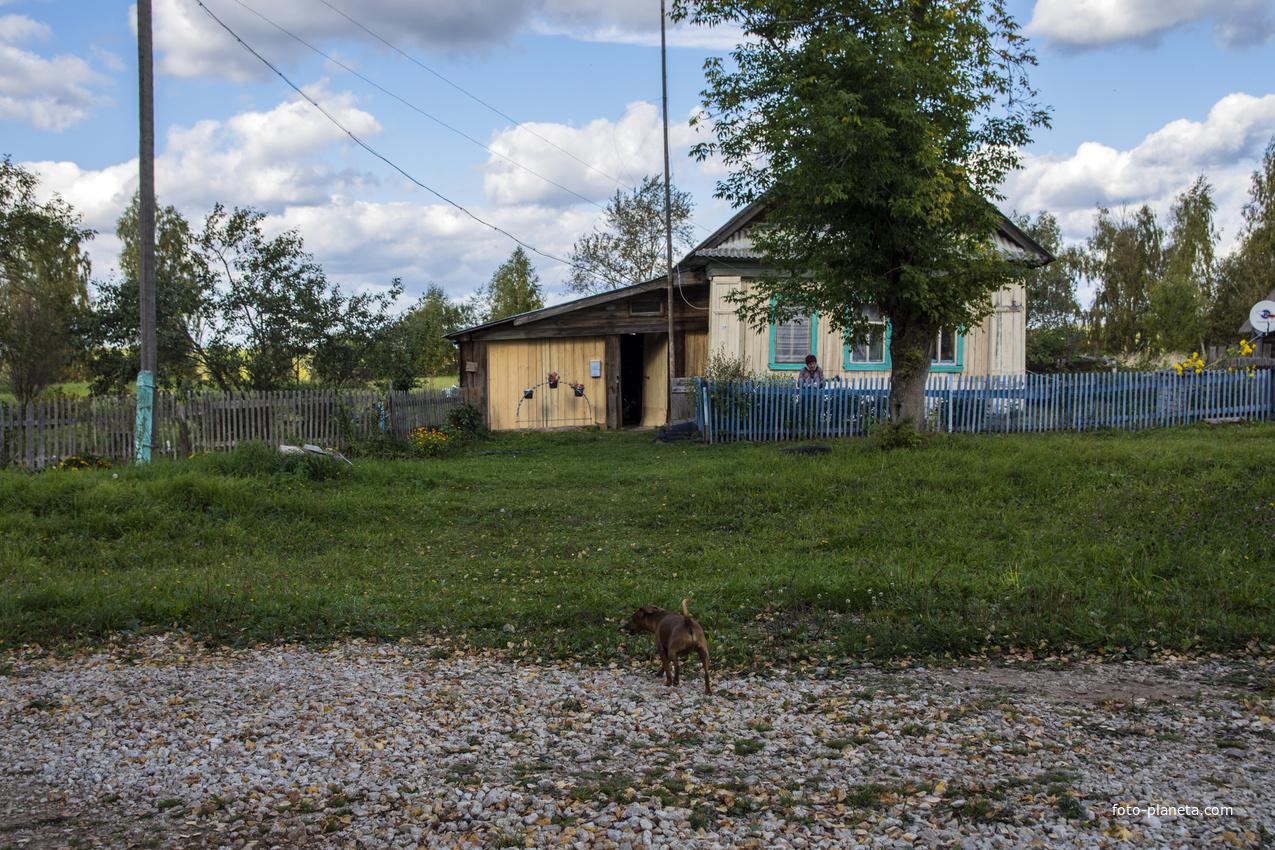 Дом в с. Борок Советского района