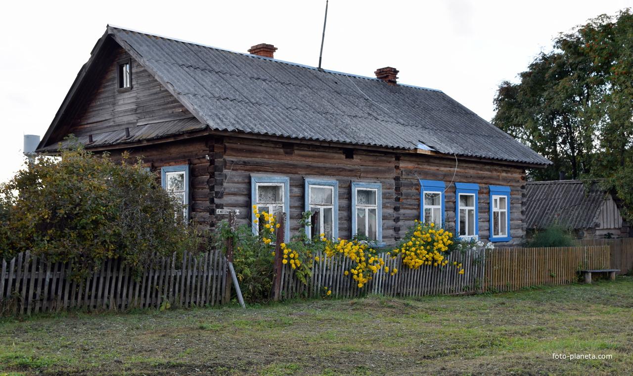 Дом на улице Молодежной в с. Борок Советского района