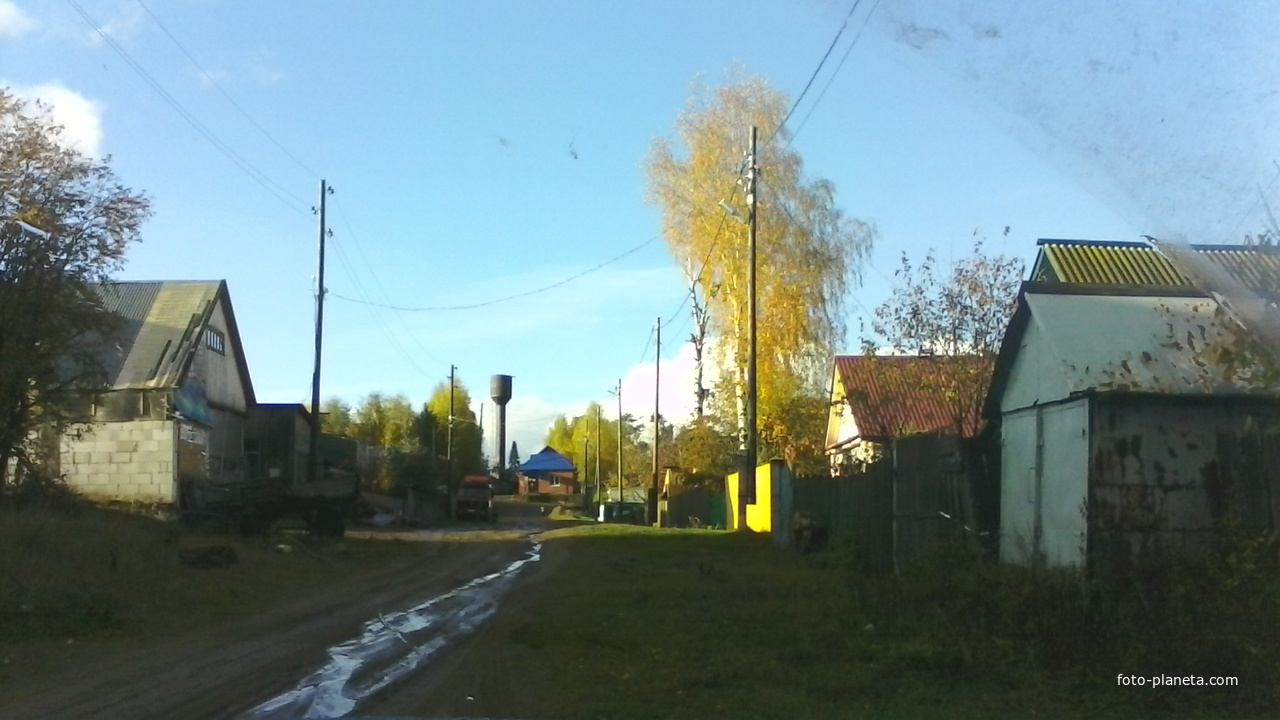 Вдоль по улице Лесной
