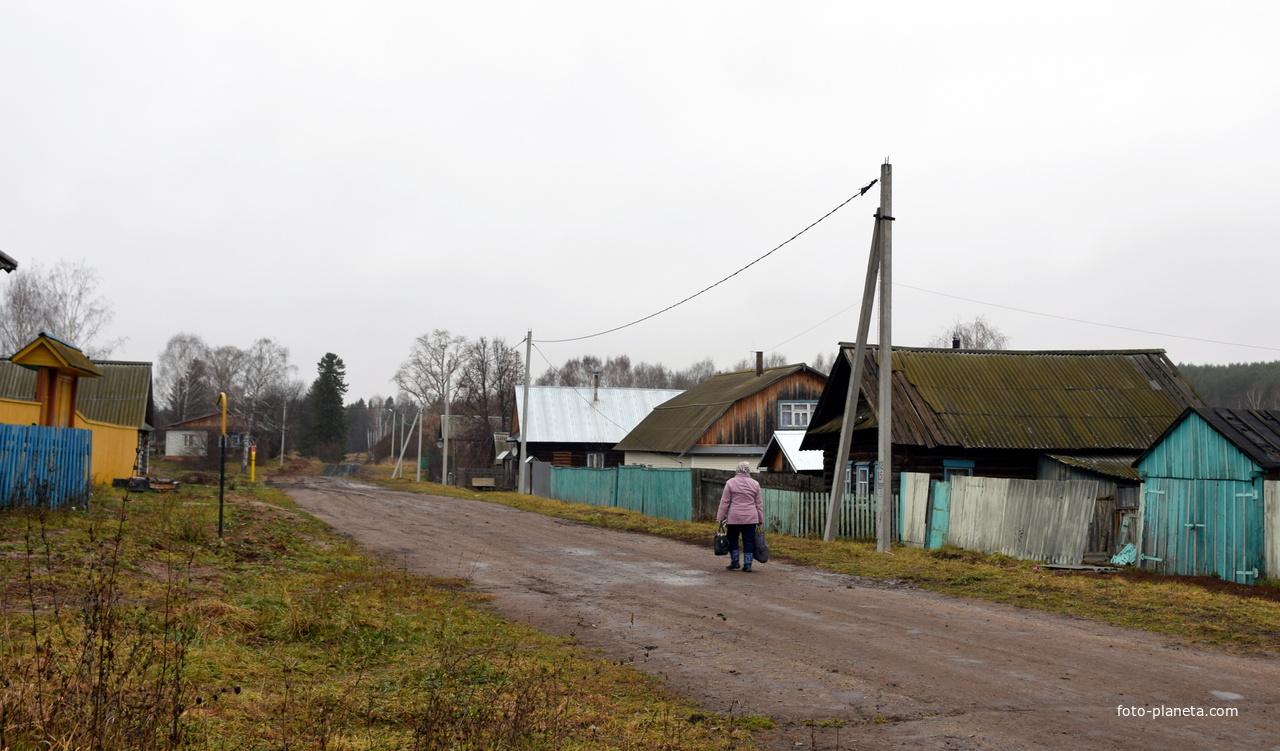 Улица в с. Кукнур Сернурского района Республики Марий Эл