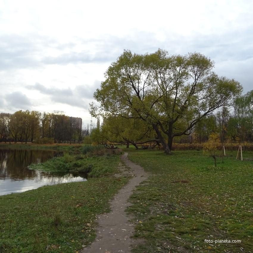 в Южно-Приморском парке
