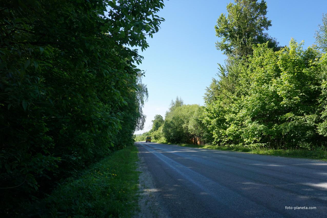 Лобановская улица