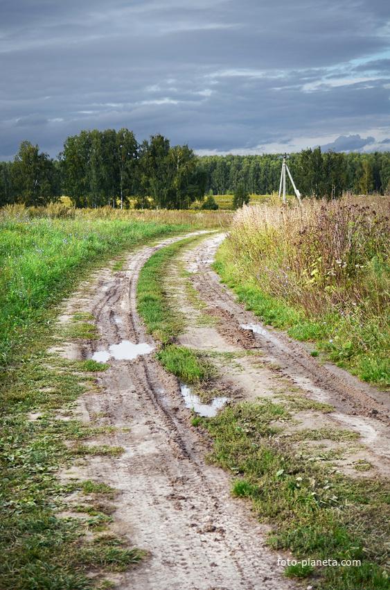 Дорога за деревней