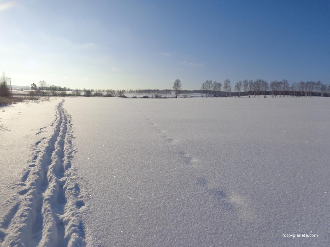 Дегилевка, большая лыжня