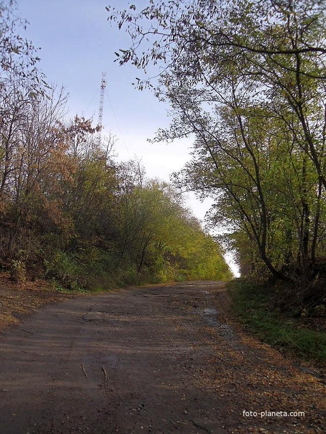 До центру села.