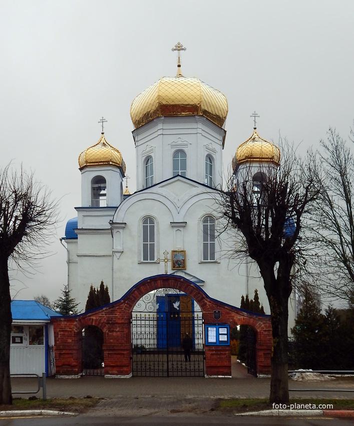 Шклов. Церковь Спаса Преображения