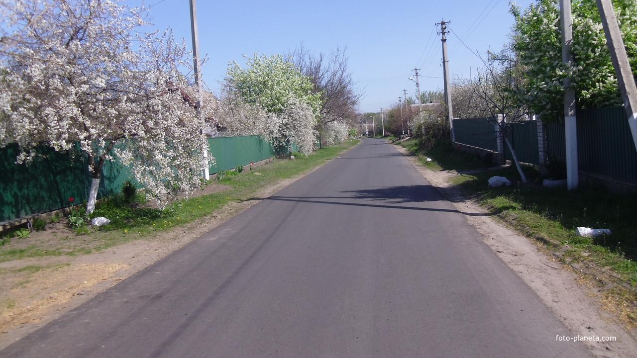 Березняки,вулиця лейтенанта Гусєва.