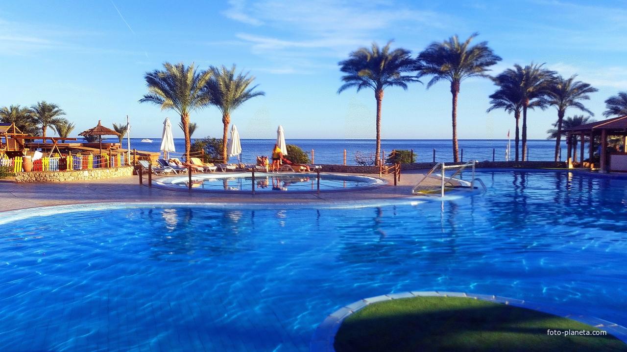 Египет. Шарм-эль-Шейх. Отель. Море,пальмы и бассейн.