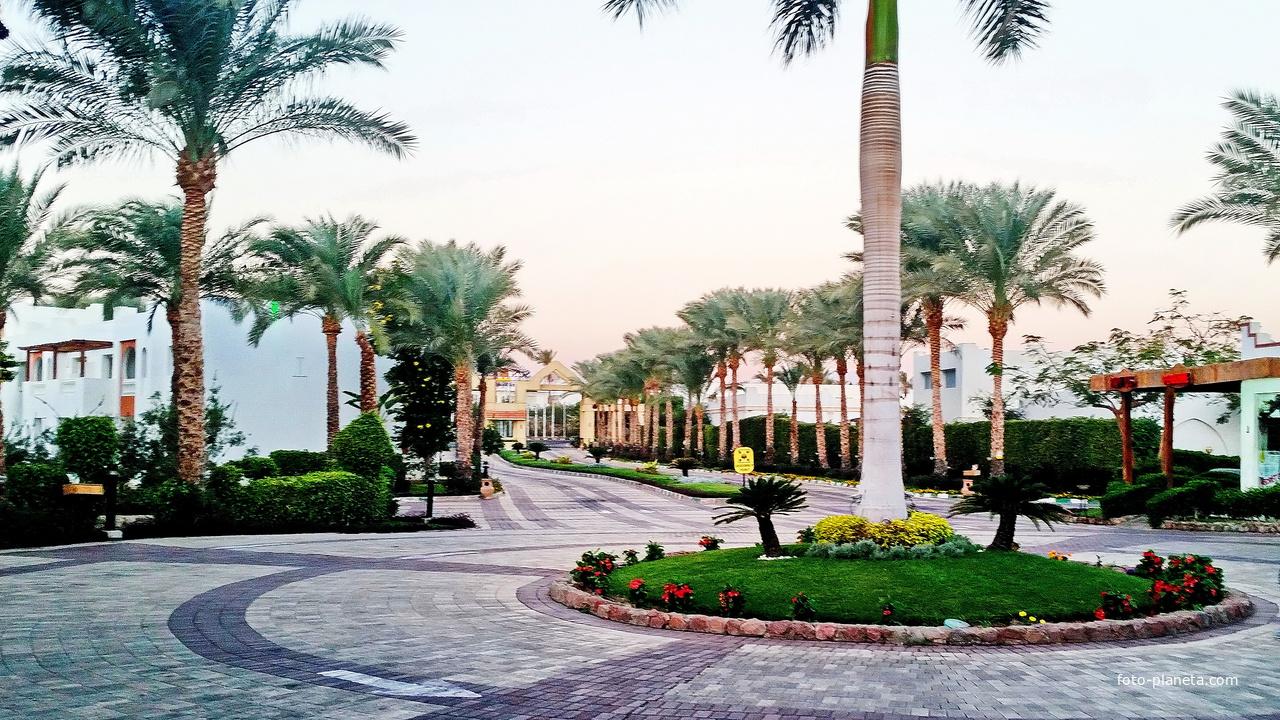 Египет. Шарм-эль-Шейх. Въезд в отель