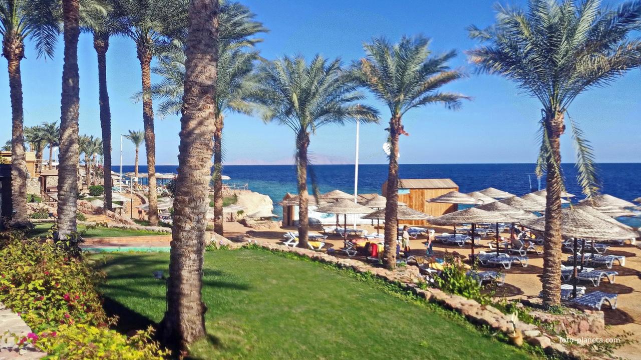 Египет. Шарм-эль-Шейх.  Игровая площадка. пляж.