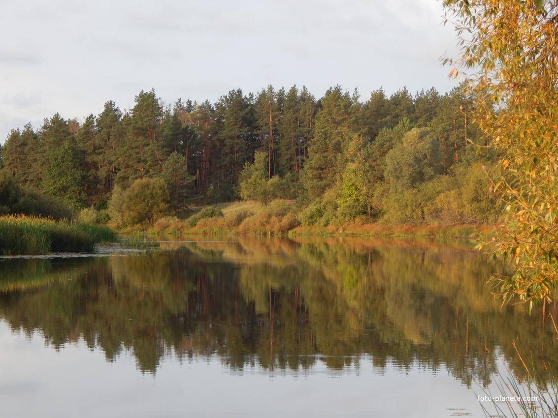 Белогорское озеро (вблизи д.Искра)