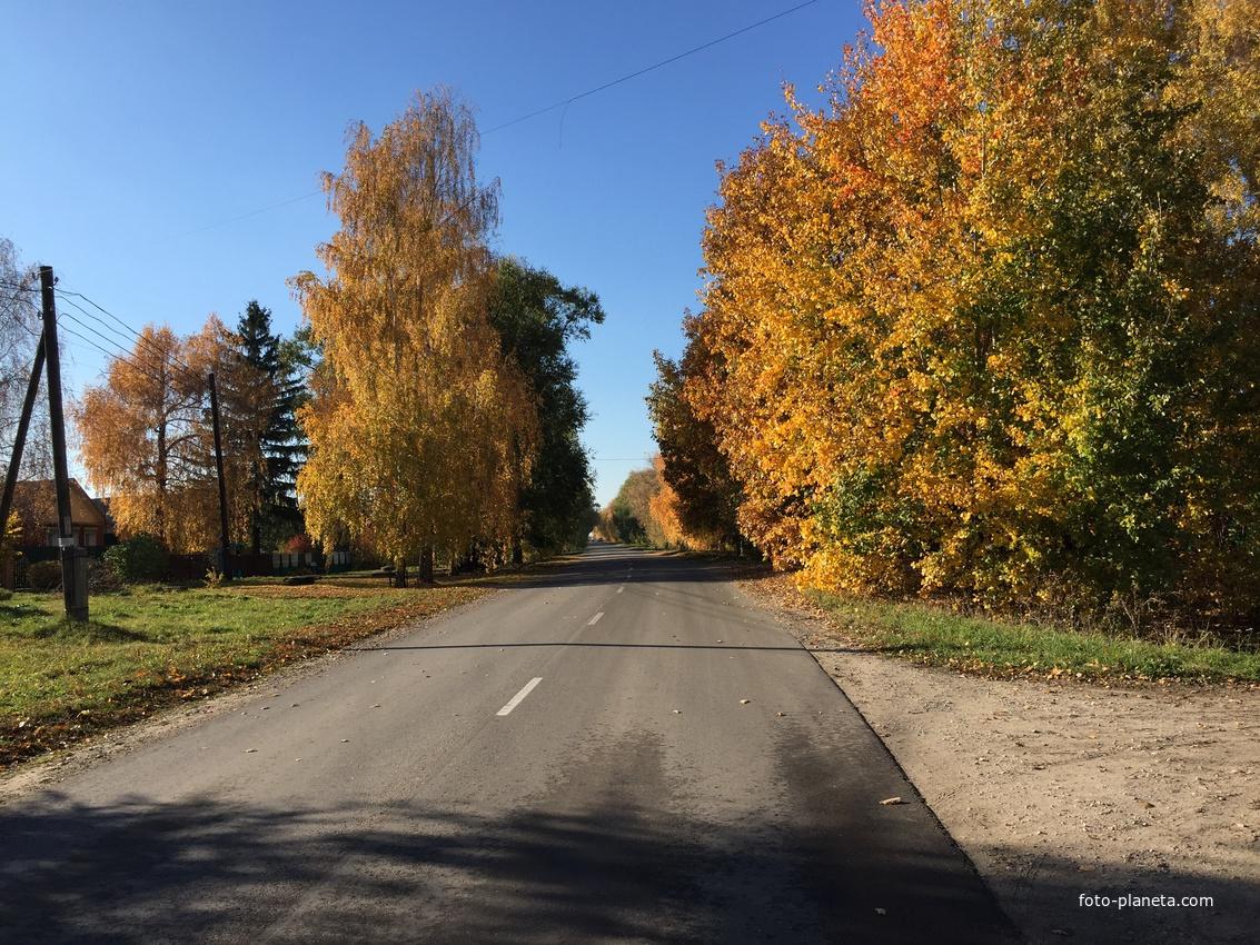 Село, Константиново