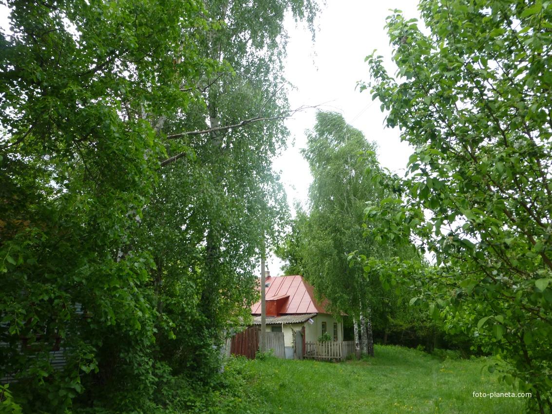 Деревня, Нижняя Паровая