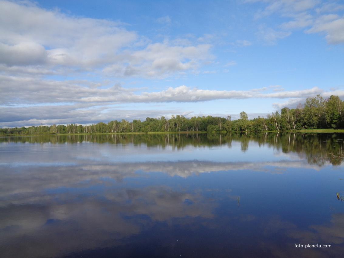 Озеро Опаринское, Мошенской район, Новгородской области. Отражение.