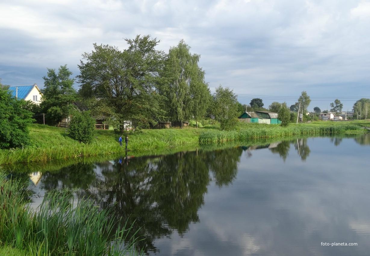 пруд на реке Друть