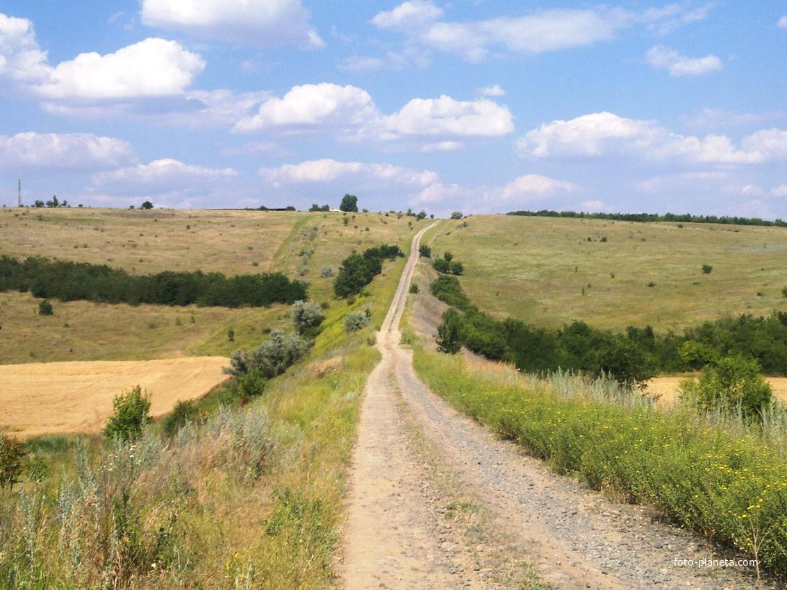 Малигоново. Дорога со стороны села Копейково.
