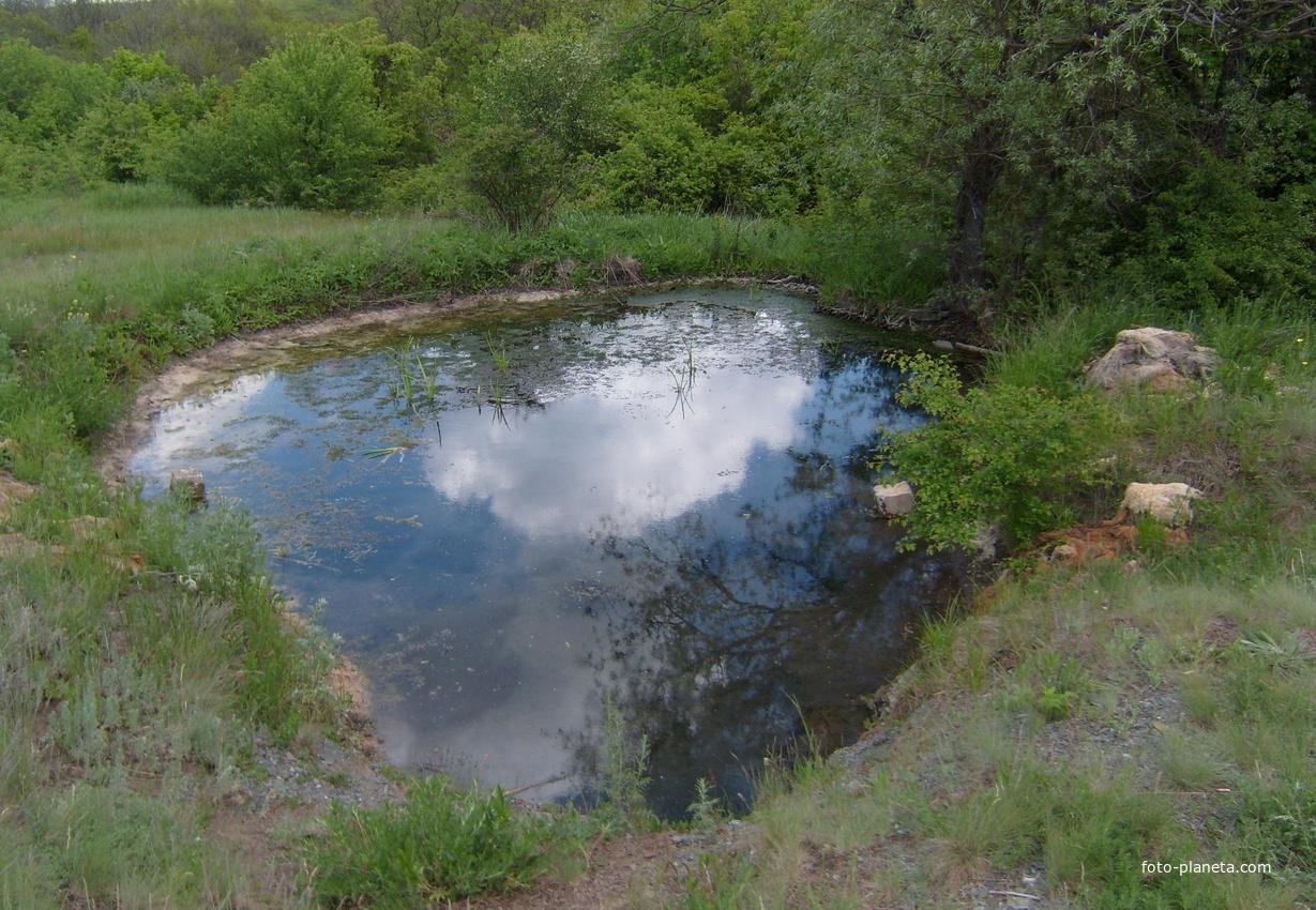 Сероводородный источник у Волчьего ставка в пгт. Грушевое.