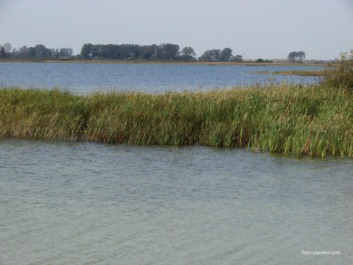 озеро сомино ярославская область рыбалка