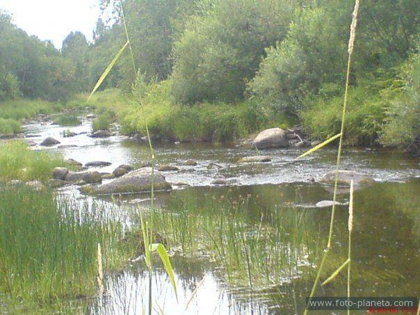 рыбалка в маловишерском районе новгородской области