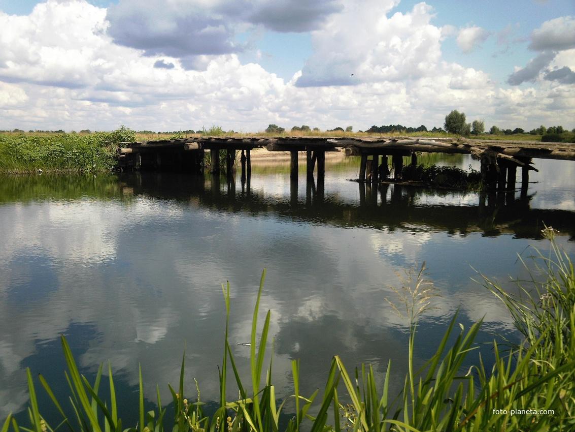 Река Воронеж у села Каликино.  Мост.