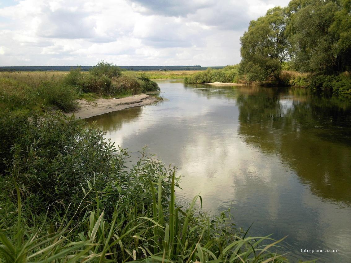 Река Воронеж у села Каликино. Пляж у Обвального.