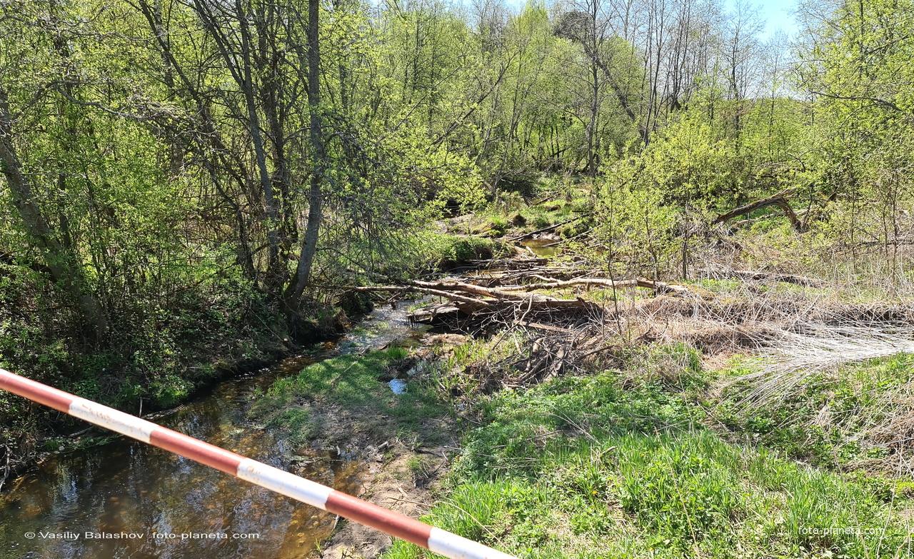 Ручей Дворянка около д. Суковатово