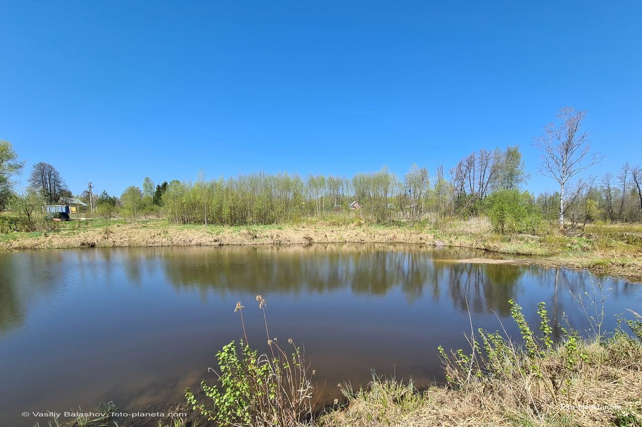 Пруд на ручье Дворянка около д. Суковатово