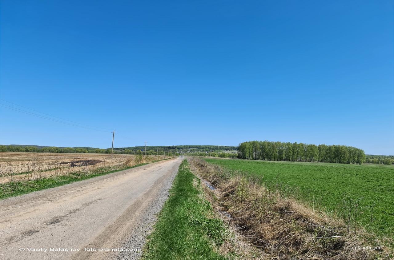 Панорама д. Чижово